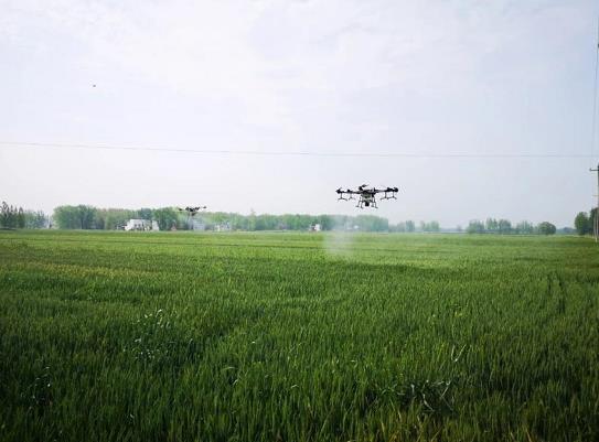 20架植保无人机护航万亩小麦病虫害防治_保险超市_互联网保险