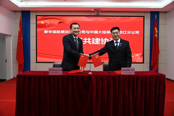 新华保险黑龙江分公司与中国大地保险黑龙江分公司党建共建正式启动_保险超市_互联网保险
