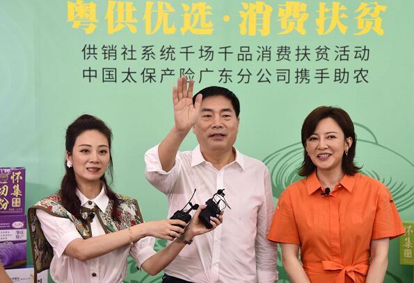 直播带货超百万元 广东太保产险助力消费扶贫_保险超市_互联网保险