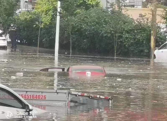 应对极端天气 黑龙江保险业在行动